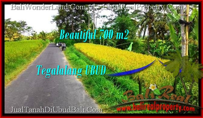 Beautiful 700 m2 LAND FOR SALE IN UBUD BALI TJUB497