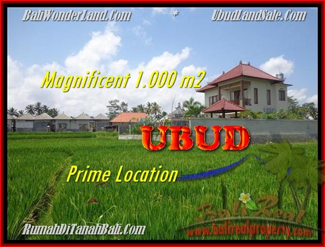 FOR SALE Beautiful PROPERTY 1.000 m2 LAND IN UBUD BALI TJUB445