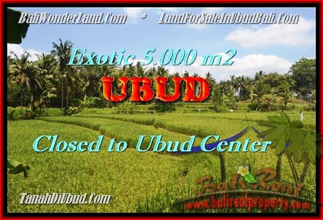 Magnificent 5.000 m2 LAND SALE IN UBUD TJUB449