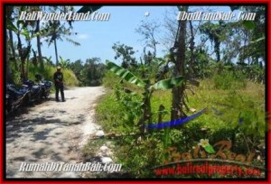 Affordable PROPERTY 3.000 m2 LAND IN UBUD BALI FOR SALE TJUB450