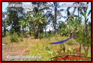 Exotic PROPERTY UBUD BALI 3.000 m2 LAND FOR SALE TJUB450