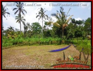 Affordable LAND IN Ubud Tegalalang FOR SALE TJUB451