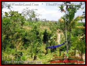 Magnificent LAND SALE IN Ubud Tegalalang TJUB451