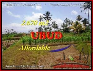 LAND FOR SALE IN Ubud Tegalalang TJUB451