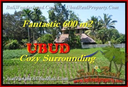 Beautiful PROPERTY 600 m2 LAND FOR SALE IN UBUD BALI TJUB452