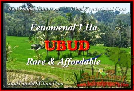 Beautiful 10.000 m2 LAND IN UBUD FOR SALE TJUB456