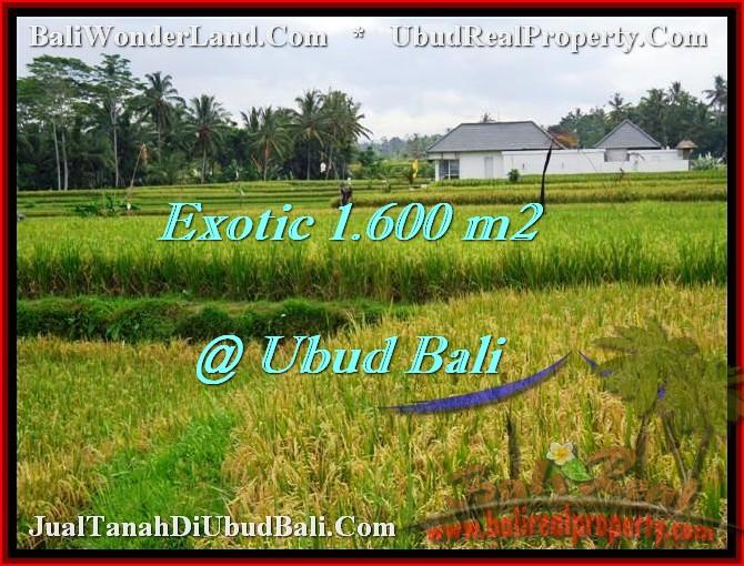 Beautiful LAND FOR SALE IN UBUD TJUB487