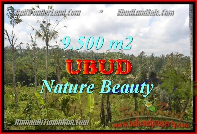 FOR SALE Affordable 9,500 m2 LAND IN UBUD TJUB430