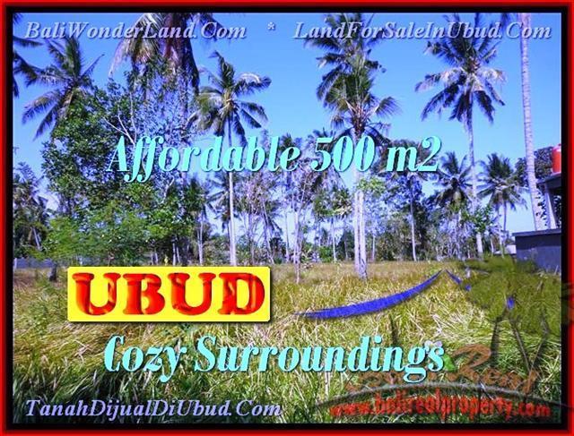 Magnificent LAND SALE IN Sentral Ubud BALI TJUB433