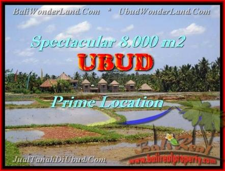 Exotic LAND IN Sentral Ubud BALI FOR SALE TJUB441