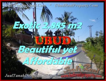 Exotic LAND IN Ubud Pejeng BALI FOR SALE TJUB442