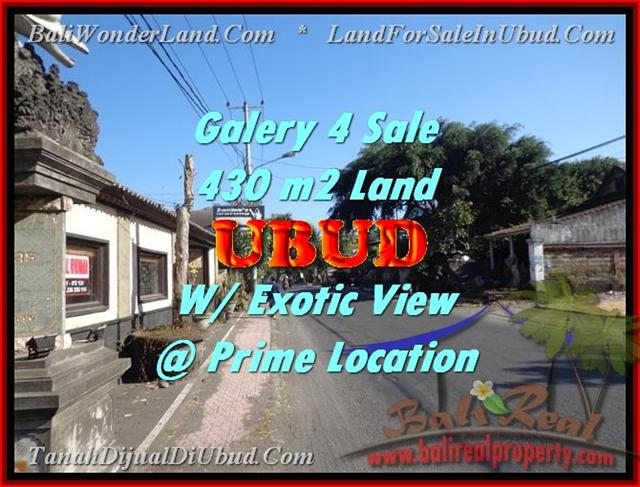 FOR SALE Beautiful PROPERTY 430 m2 LAND IN UBUD BALI TJUB443
