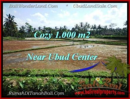 FOR SALE Beautiful PROPERTY 1,000 m2 LAND IN UBUD BALI TJUB501