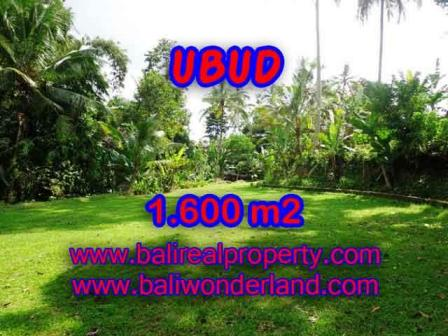 Magnificent PROPERTY 1,600 m2 LAND IN Sentral Ubud FOR SALE TJUB416
