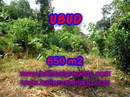 Affordable PROPERTY LAND FOR SALE IN UBUD TJUB417