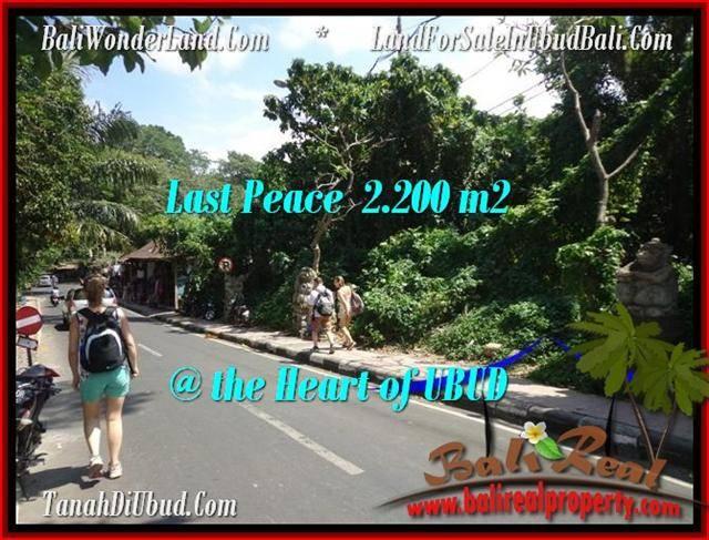 Magnificent Sentral Ubud BALI LAND FOR SALE TJUB509