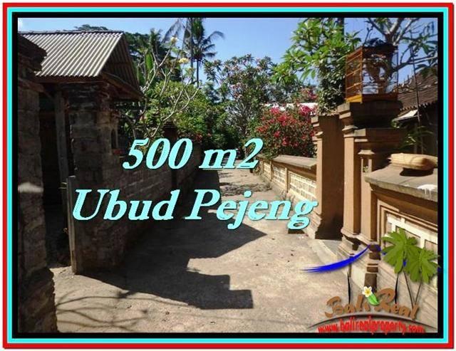 Beautiful 500 m2 LAND IN UBUD BALI FOR SALE TJUB515