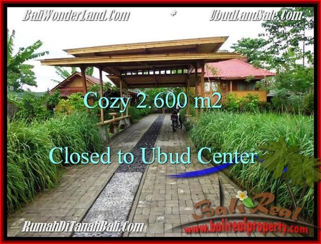 Affordable PROPERTY UBUD LAND FOR SALE TJUB491
