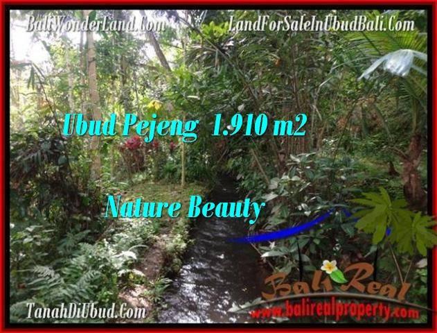 Magnificent 1,910 m2 LAND SALE IN UBUD BALI TJUB504