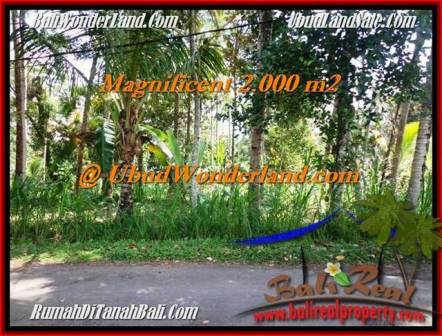 Exotic UBUD BALI 2,000 m2 LAND FOR SALE TJUB506