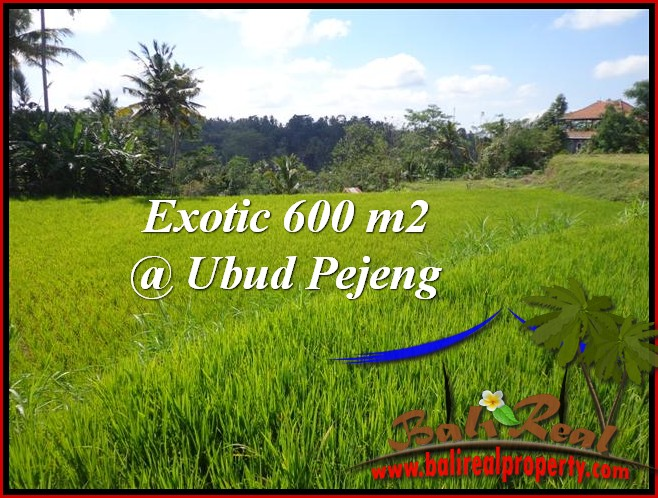 Affordable 600 m2 LAND SALE IN UBUD TJUB513