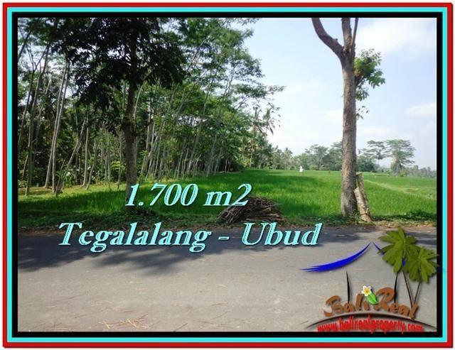 Beautiful 1,700 m2 LAND IN UBUD BALI FOR SALE TJUB518