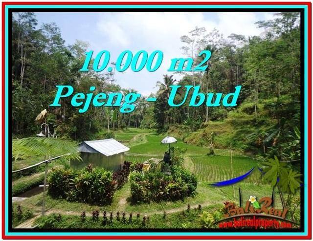 Beautiful PROPERTY 10,000 m2 LAND FOR SALE IN Ubud Tampak Siring TJUB519