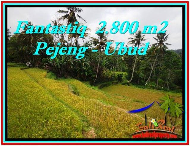 FOR SALE Magnificent PROPERTY 2,800 m2 LAND IN UBUD BALI TJUB521