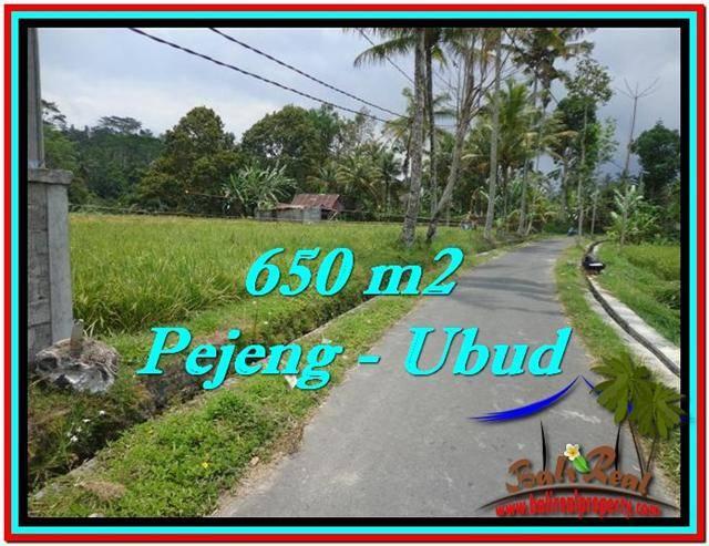 Magnificent LAND SALE IN Ubud Tampak Siring BALI TJUB522