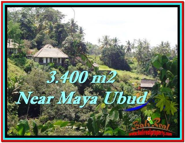 Beautiful PROPERTY 3,400 m2 LAND SALE IN Ubud Tengkulak TJUB514