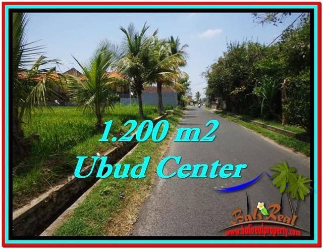 Beautiful PROPERTY LAND FOR SALE IN UBUD BALI TJUB525