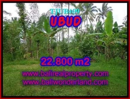 Exotic LAND IN Ubud Tegalalang BALI FOR SALE TJUB409
