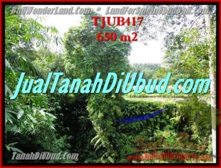 Affordable 650 m2 LAND IN UBUD BALI FOR SALE TJUB417