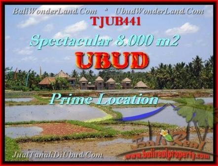 Magnificent PROPERTY LAND IN UBUD FOR SALE TJUB441