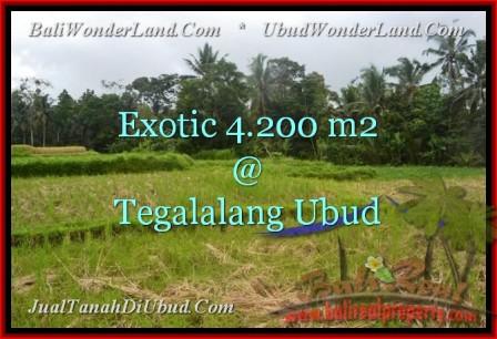 Exotic 4,200 m2 LAND IN UBUD BALI FOR SALE TJUB461