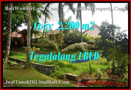FOR SALE 2,200 m2 LAND IN UBUD TJUB462