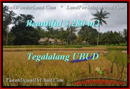 FOR SALE 3,280 m2 LAND IN UBUD TJUB463