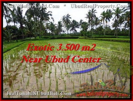 FOR SALE Magnificent LAND IN Ubud Tegalalang BALI TJUB477