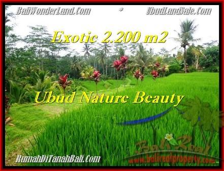 Exotic 2,200 m2 LAND IN UBUD BALI FOR SALE TJUB480