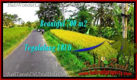 700 m2 LAND IN UBUD BALI FOR SALE TJUB497