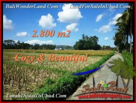 Affordable UBUD BALI 2,800 m2 LAND FOR SALE TJUB498