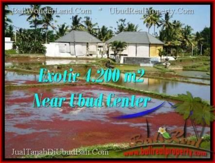 Affordable PROPERTY 4,200 m2 LAND IN Sentral Ubud FOR SALE TJUB502