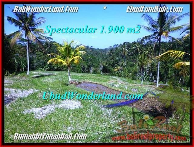 Magnificent PROPERTY 1,900 m2 LAND SALE IN Ubud Tegalalang TJUB505
