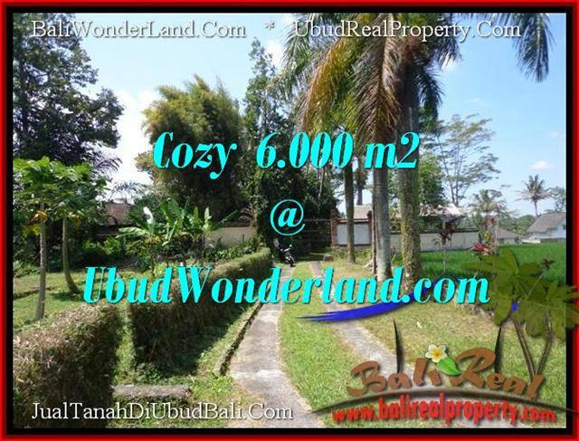 Beautiful 6,000 m2 LAND FOR SALE IN Sentral Ubud TJUB507