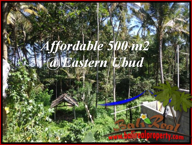 Beautiful UBUD LAND FOR SALE TJUB515