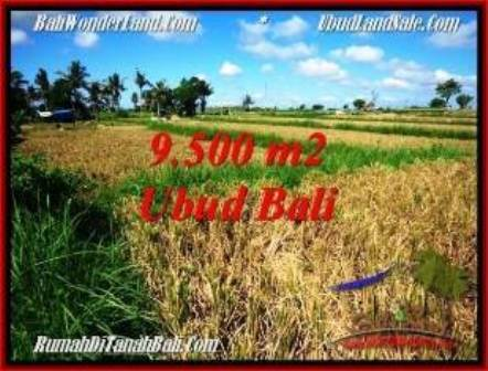 Exotic LAND IN UBUD FOR SALE TJUB548