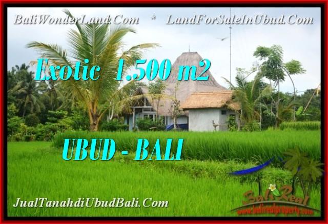 Beautiful PROPERTY LAND IN UBUD BALI FOR SALE TJUB541