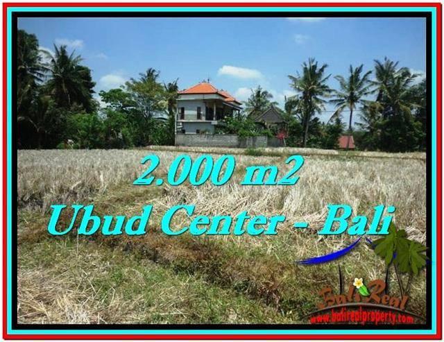 Affordable PROPERTY Sentral Ubud 2,000 m2 LAND FOR SALE TJUB524