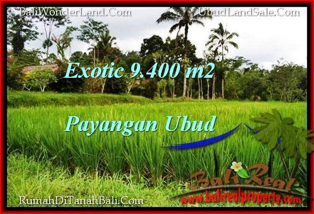 Exotic PROPERTY 9,400 m2 LAND SALE IN Ubud Payangan TJUB526