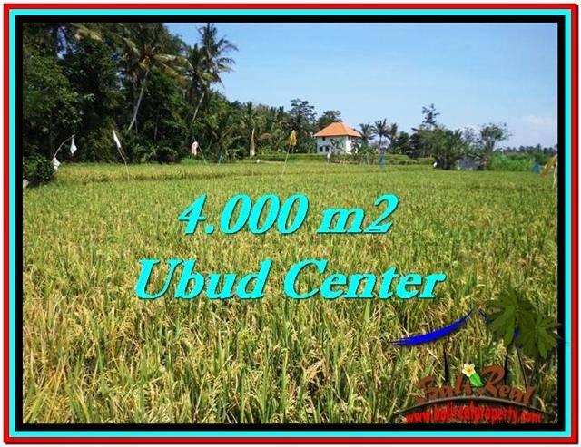 Beautiful PROPERTY 4,000 m2 LAND FOR SALE IN Sentral Ubud BALI TJUB527